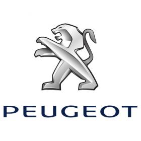 Delovi za mali i veliki servis Peugeot Partner Tepee 1.6 HDi 55 kW